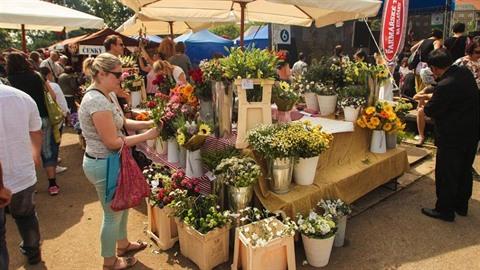 Zmizí z farmářských trhů i řezané květiny, které nerostly u Nymburka v Polabí?