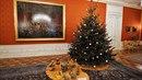 Pražský hrad se ponořil do vánoční atmosféry a otevřel brány veřejnosti.