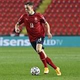 Lukáš Provod vstřelil proti Belgii jediný gól českého týmu.