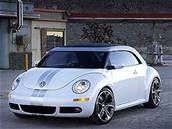VW New Beetle Ragster