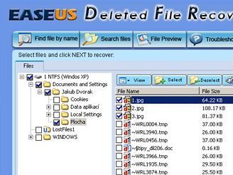 Easeus Deleted File