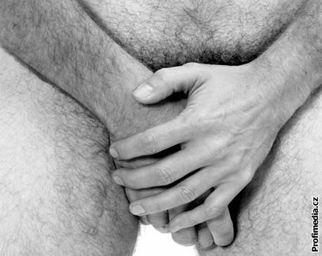 Černé kořist sex trubice