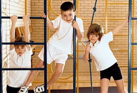 ba9a17210 Děti by sportem a pohybovou aktivitou měly strávit alespoň sedm hodin týdně.