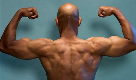 Výsledek obrázku pro testosteron