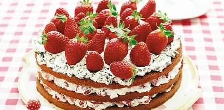 jak upéct dort k narozeninám Už žádné nepovedené obludy. Triky, jak upéct ty nejlepší dorty  jak upéct dort k narozeninám