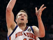 David Lee z New York Knicks
