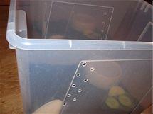 Příklad boxu, ve kterém se dají šneci chovat. Jako podestýlka se používá kokosový substrát.