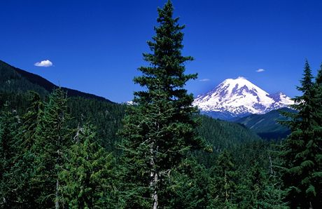 USA, Mount Rainier