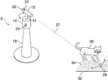 Method and apparatus for automatically exercising a curious animal - 6701872