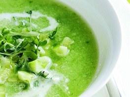 Jarní zeleninová dieta  deset lehkých receptů tentokrát s okurkou ... efcd6d805e