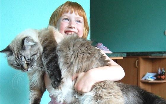 velká prsa a velká kočička fotky