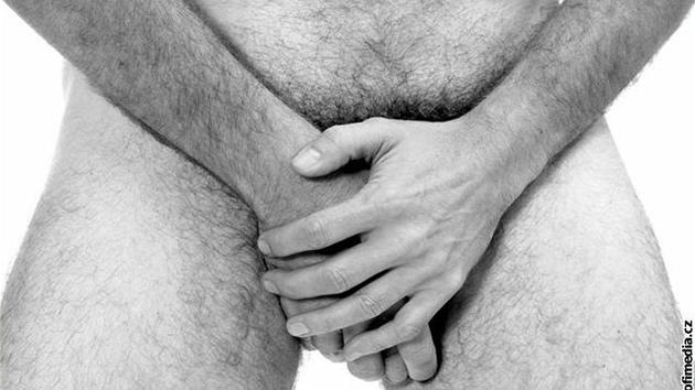 velký penis kůže