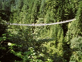 Most Capilano Suspension Bridge v kanadském Vancouveru