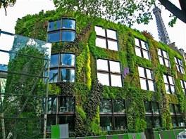 Vertikální zahrady vzbuzují příjemné pocity dokonce i u skupin, které mají...