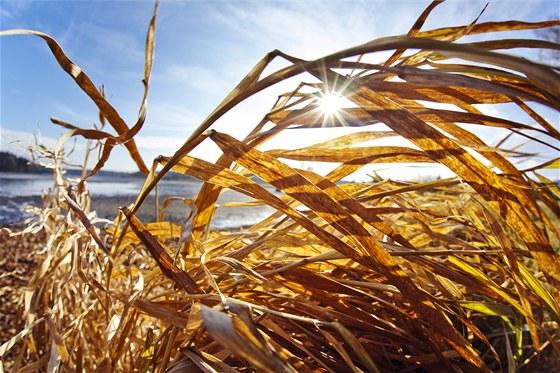 Nezaprší a nezaprší. Po teplé a extrémně suché zimě hrozí v létě ... 44dbbb45de