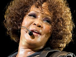 Whitney Houston  v roce 2010