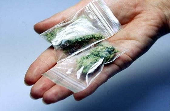 Výsledek obrázku pro pěstování marihuany přestupek