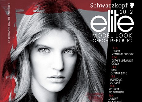 Schwarzkopf Elite Model Look 2012