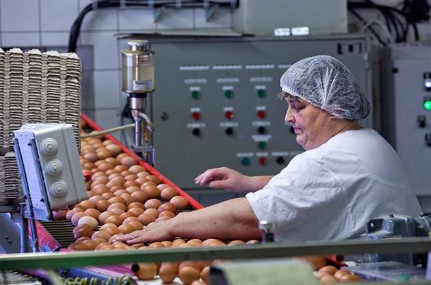 Vejce podraží. Řetězce začaly omezovat prodej vajec z klecových chovů