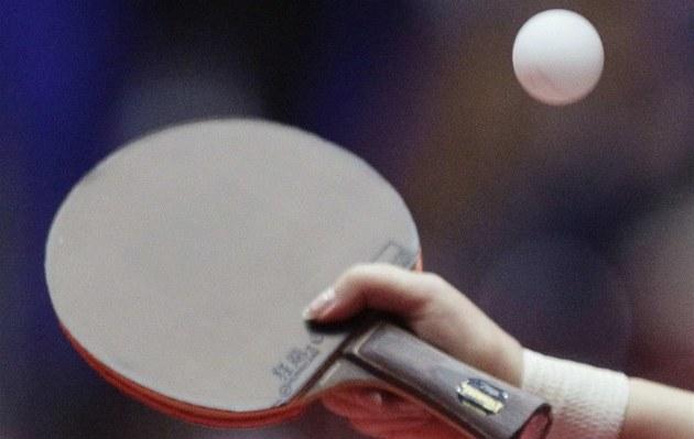 Nedoma je novým koučem reprezentace stolních tenistek