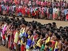 Svazijské dívky při rituálním tanci, při kterém si král vybírá budoucí
