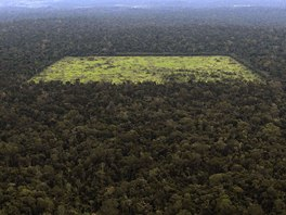 An aerial view shows a tract of Amazon rainforest which has been cleared by...
