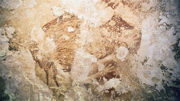 Archeologové objevili nejstarší jeskynní malbu světa, je stará 45 tisíc let