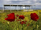 Poppies are seen near a deserted metal construction close to the town of...
