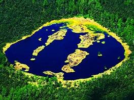 Chalupská slať, (červen 2008). Tohle výjimečné rašeliniště je perlou Šumavy, je...