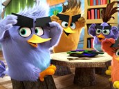Trailer k filmu The Angry Birds