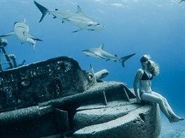 9c113ec07c8 OBRAZEM  Mořský anděl a čelisti. Modelka se fotila mezi žraloky ...