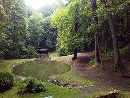 Zdejší listnatý les je plný nádherných vzrostlých dubů letních nebo jírovců s...