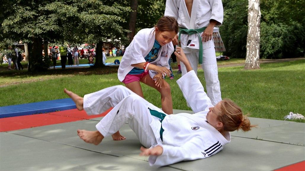 Judo si mohli vyzkoušet i návštěvníci olympijského parku v Plzni. c125a934e3