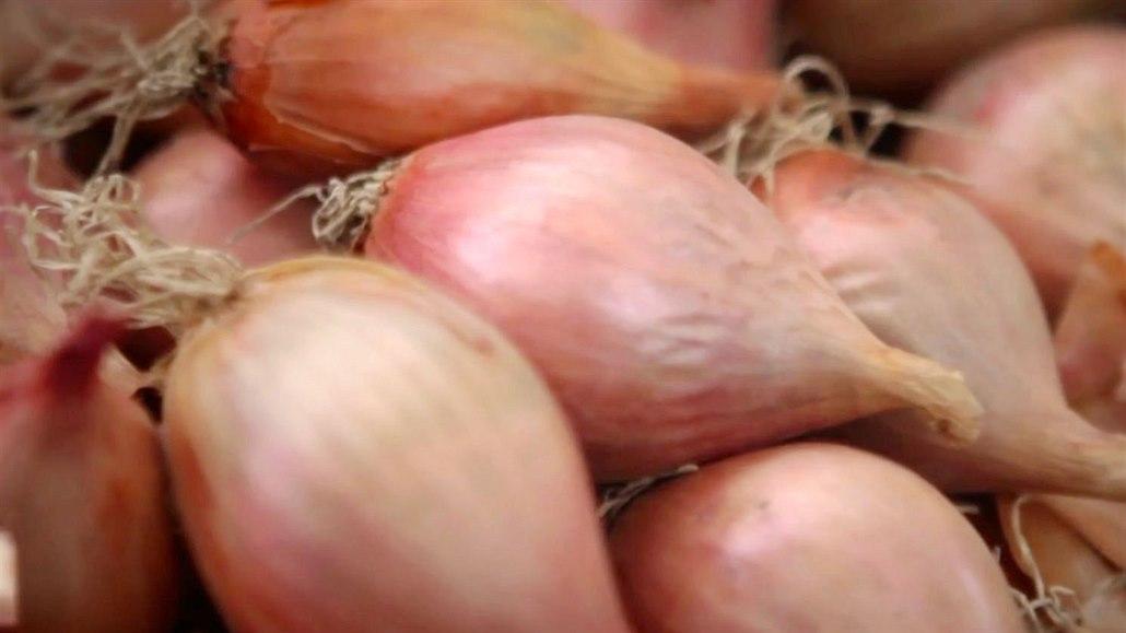 PŘEHLED: Nejvíce zdražila cibule a zelí. Ušetří se na jablkách