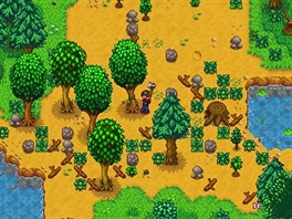 Switch - Stardew Valley