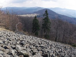 Kamenná pole pod Studencem