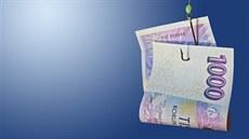 Okamžitá půjčka v hotovosti ostrava quest