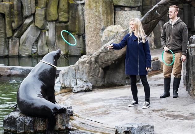 VELKÝ TEST ZOO: přehled cen, zvířat i atrakcí. Přijeďte, pomůžete!