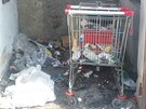 Tepličané nejčastěji nahlašují nepořádek v ulicích, naposledy třeba odpadky ve...
