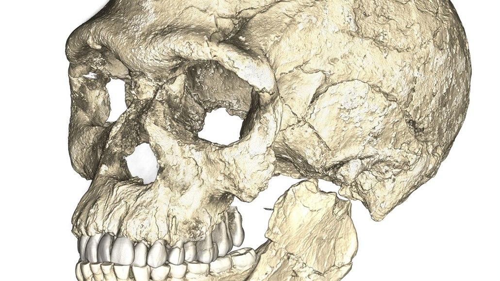 Fosilie vlastně používá radioaktivní datování