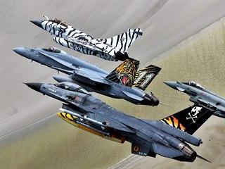 Společný let vlajkových letounů tygřích letek z Belgie (F-16), Švýcarska...