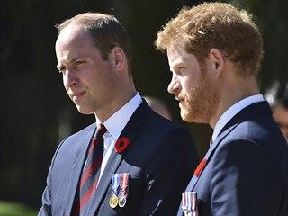 Princ William a princ Harry (Arras, 9. dubna 2017)