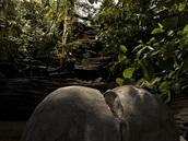 Zátiší pro fotografii. V popředí umělý kámen, který Kula vytvořil s pomocí...