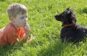 Poradna: Pořídili jsme synovi psa, ale rychle o něj ztratil zájem