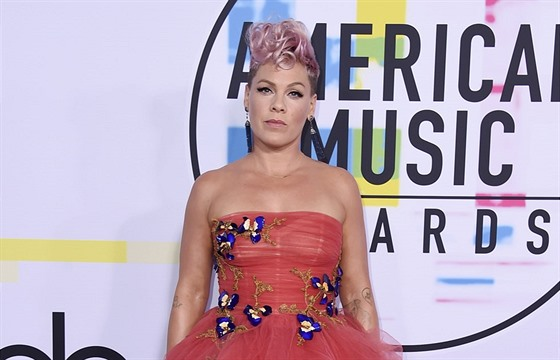 Pink na American Music Awards (Los Angeles, 19. listopadu 2017)