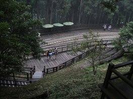 Velice atraktivní národní park Alishan v nadmořské výšce 2 200 metrů zabírá...