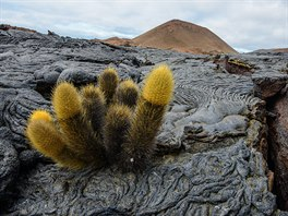 Vulkanická krajina některých ostrovů má svoje kouzlo.