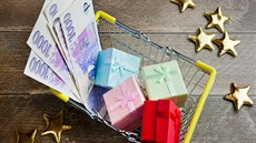 nabídka půjčky od soukromé osoby online