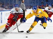 Martin Kaut se v utkání mistrovství světa juniorů probíjí švédskou obranou.