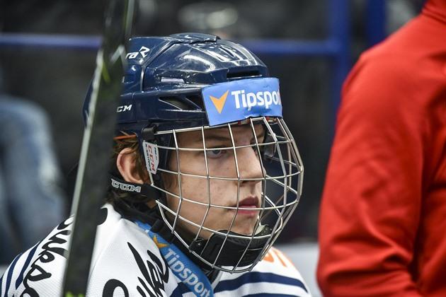 Image result for jaromir pytlik hokej